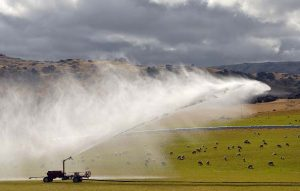 Benefits of Agricultural Activities in New Zealand